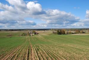 Gražaus kaimo vizija