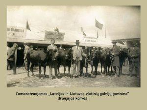 1928 m. Žemės ūkio ir pramonės paroda Kaune. Tarpukario Lietuvos valdžia skyrė didelį dėmesį žemės ūkiui / Janinos Tallat-Kelpšienės nuotrauka
