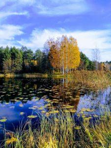 Mergelių akelių ežeras